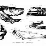 Istiodactylus skull