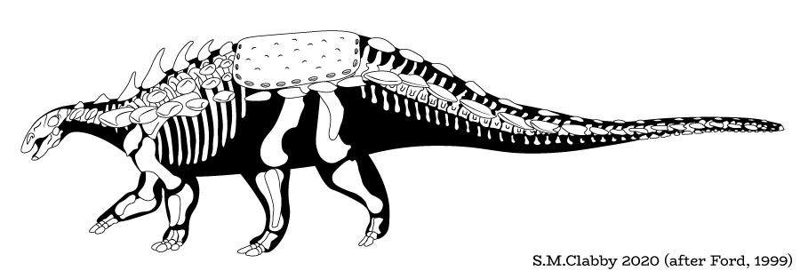 Polacanthus skeletal